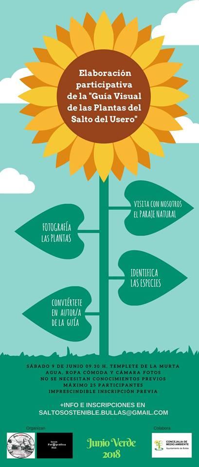 Elaboración de una guía visual de las plantas, con Salto SOStenible