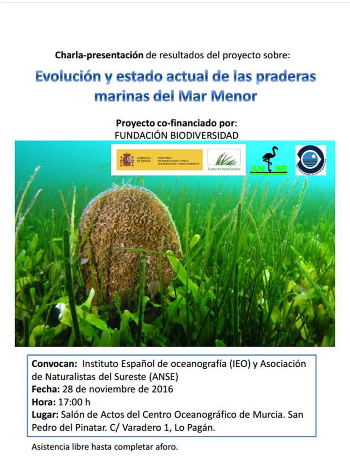 Ponencia sobre el estado de las praderas marinas del Mar Menor, con el IEO