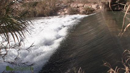 Gestión del agua