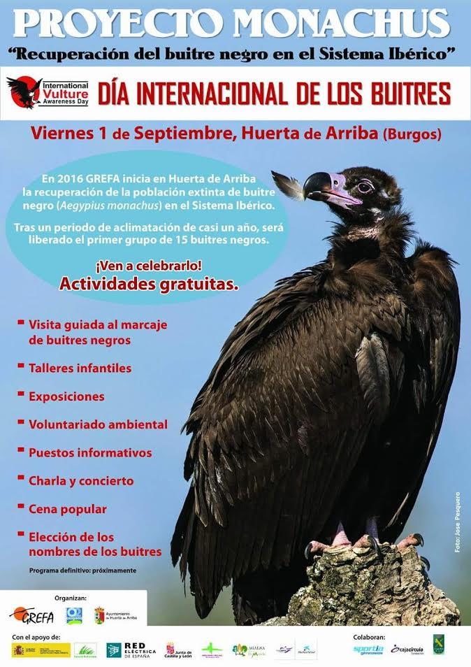 Día Internacional de los buitres 2017, con Grefa