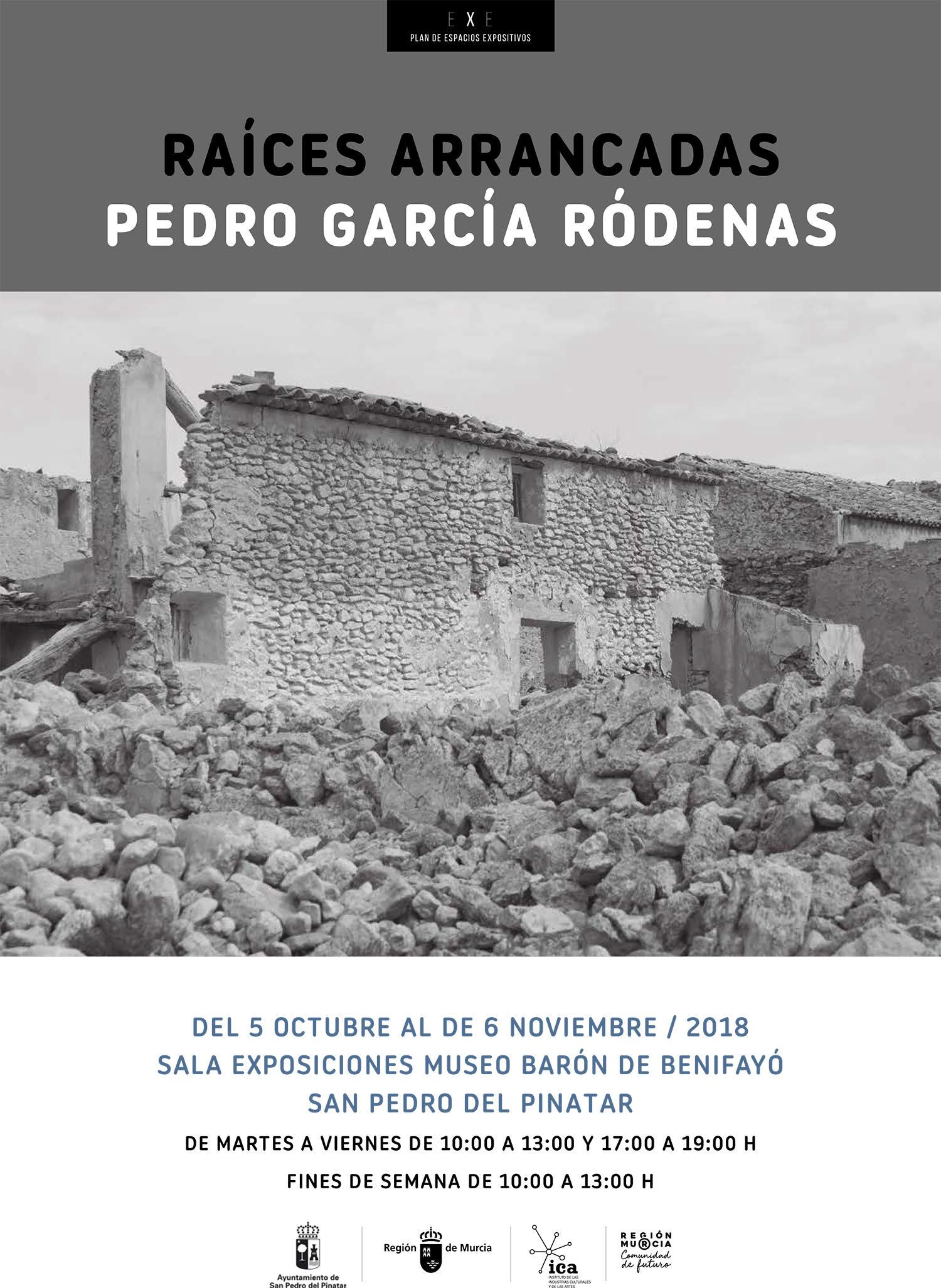 Exposición 'Raíces Arrancadas', de Pedro García Ródenas