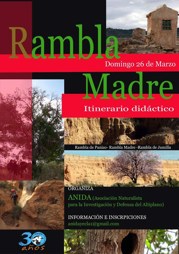 Ramblas de Panizo, Madre y Jumilla, con Anida Yecla