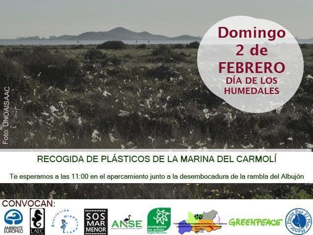 Recogida de plásticos en la Marina del Carmolí, con Ambiente Europeo