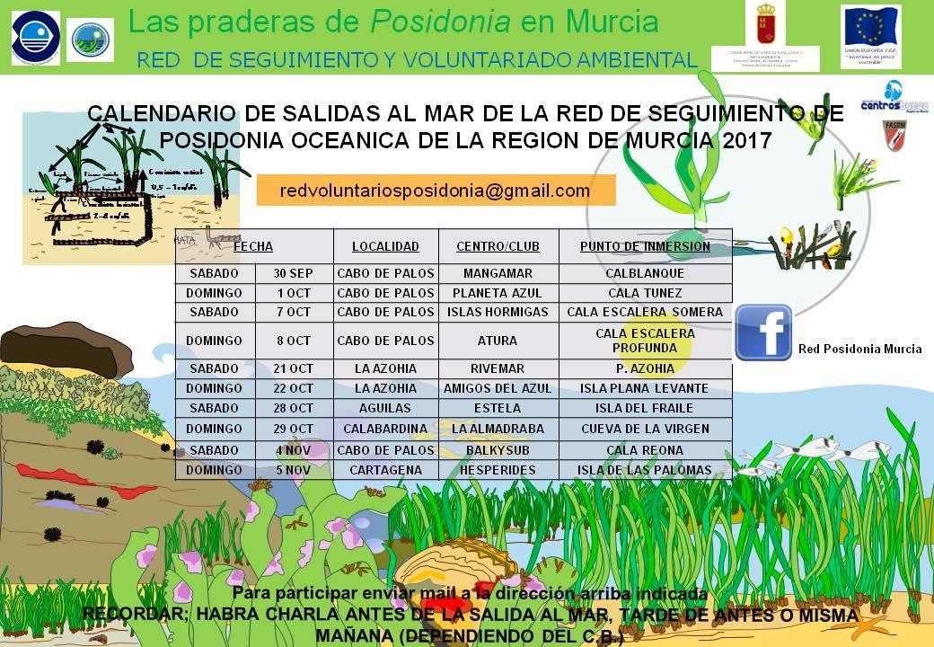 14 Campaña de la Red de Posidonia de la Región de Murcia