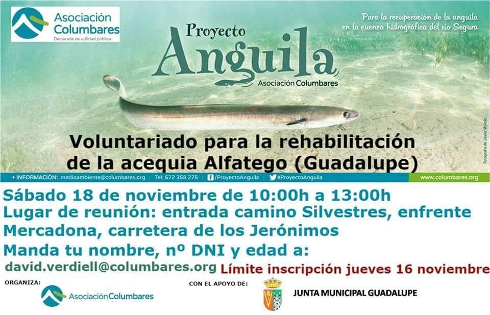 Rehabilitación de la acequia Alfatego, con la Asociación Columbares