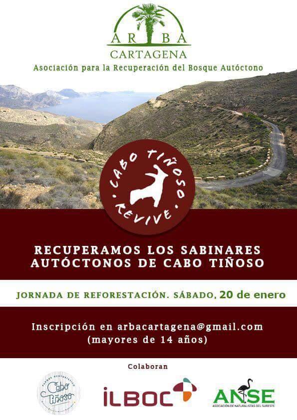 Recuperación de sabinares, con ARBA Cartagena