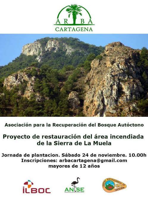 Repoblación de la Sierra de La Muela, con ARBA
