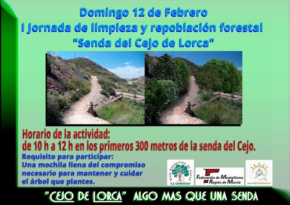 Limpieza y repoblación forestal, con La Carrasca