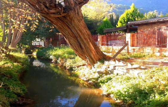 Ruta Cieza-Abarán por el río Segura, el monte de la Atalaya y el Menjú con el Albergue y Aula de Naturaleza El Picarcho.