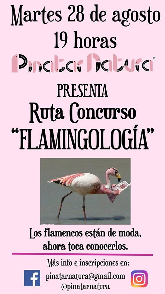 Ruta Concurso 'Flamingología', con Pinatar Natura