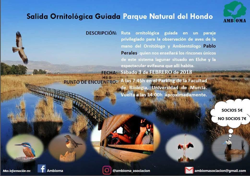 Salida ornitológica por El Hondo, con Ambioma