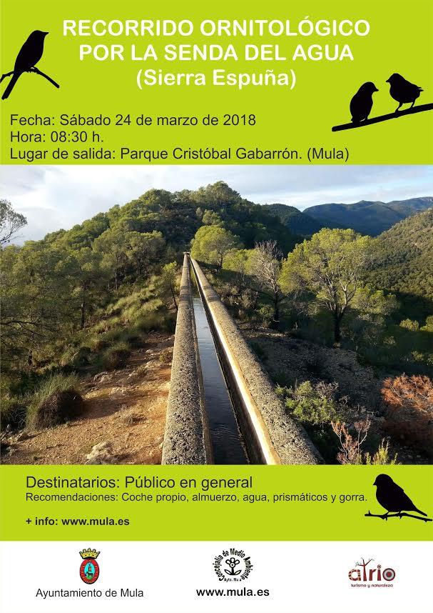 Ruta ornitológica por la Senda del Agua, con el Ayto. de Mula