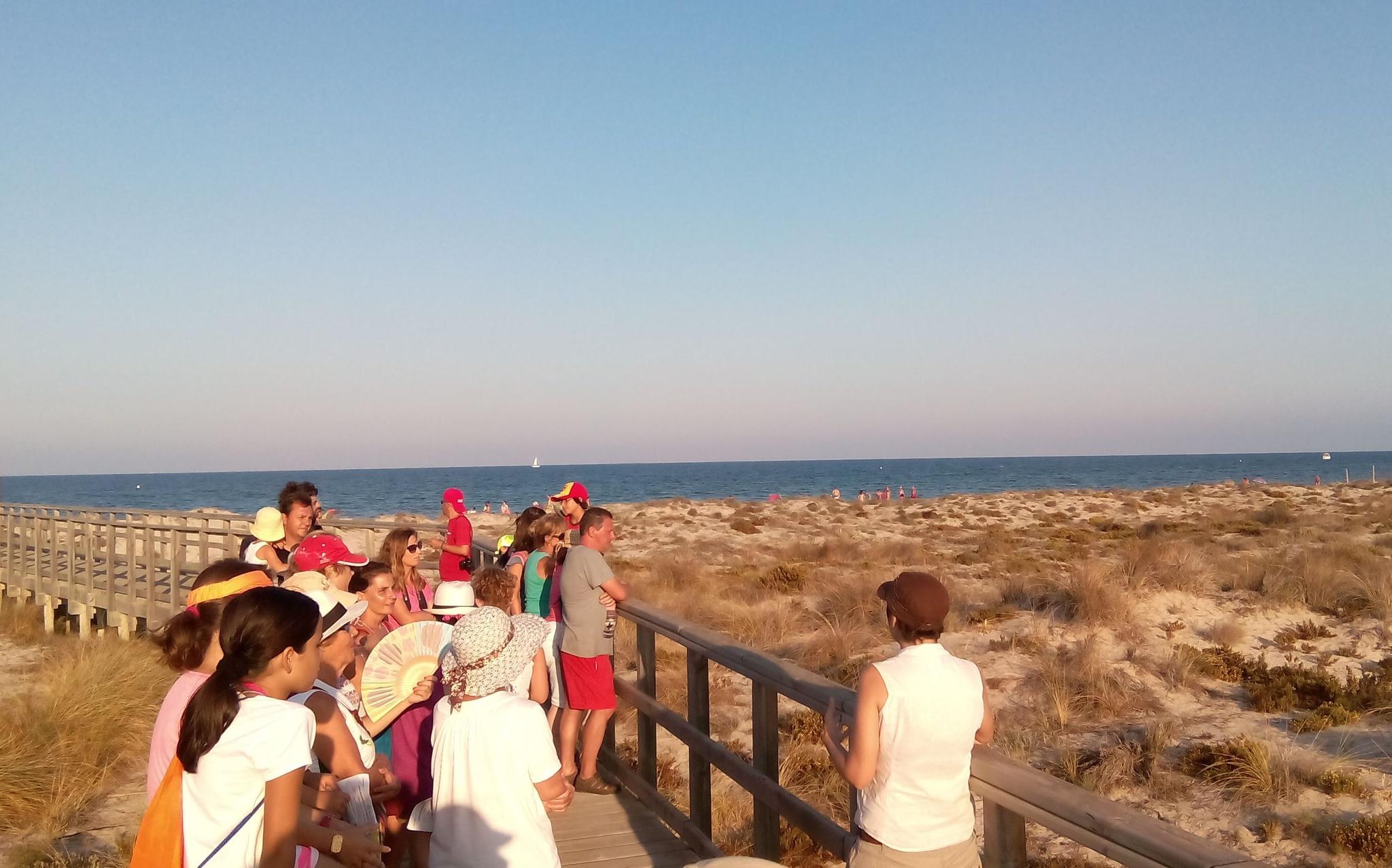 Ruta por el PR de las Salinas y Arenales de San Pedro del Pinatar, donde es fácil encontrar restos de Posidonia oceanica