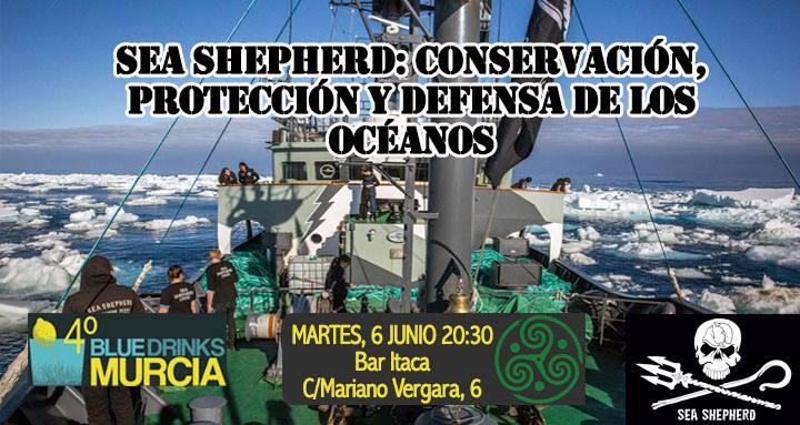 Charla sobre Sea Shepherd Global, con Blue Drinks Murcia