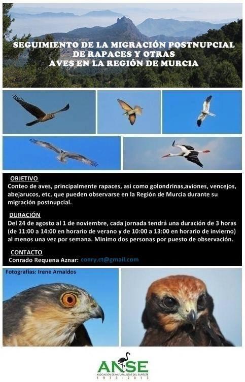 Seguimiento de la Migración Postnupcial de Rapaces y Otras Aves