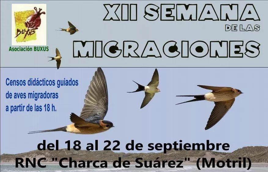 XII Semana de las Migraciones Charca Suárez, con Buxus