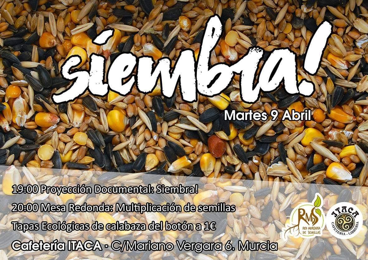 Documental sobre la producción de semillas, con la Red Murciana de Semillas