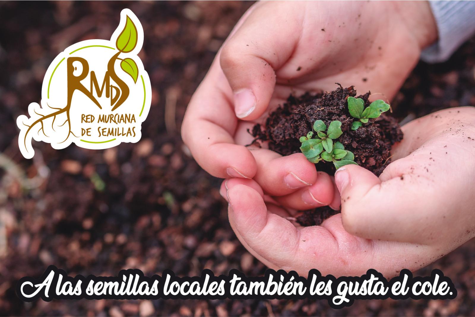 Reparto de semillas de variedades locales a centros escolares, con la Red Murciana de Semillas