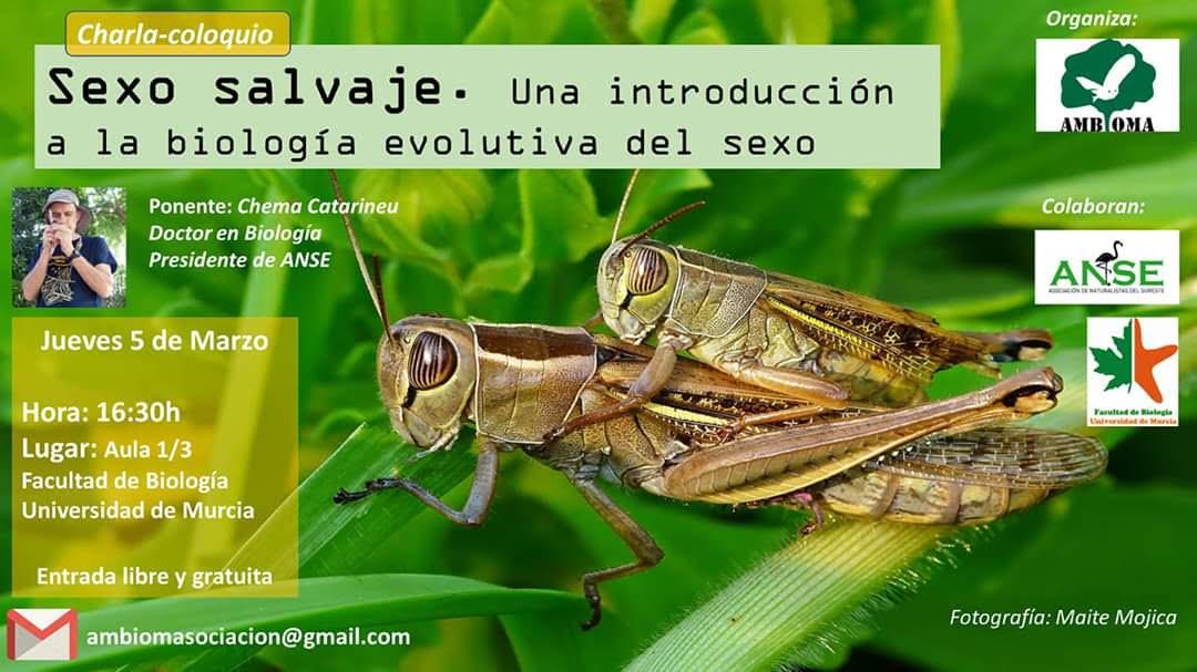 Sexo salvaje en animales, con Ambioma