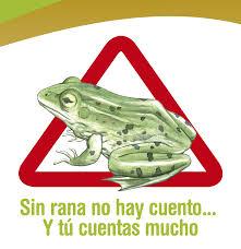 Campaña 'Sin rana no hay cuento', de la CARM