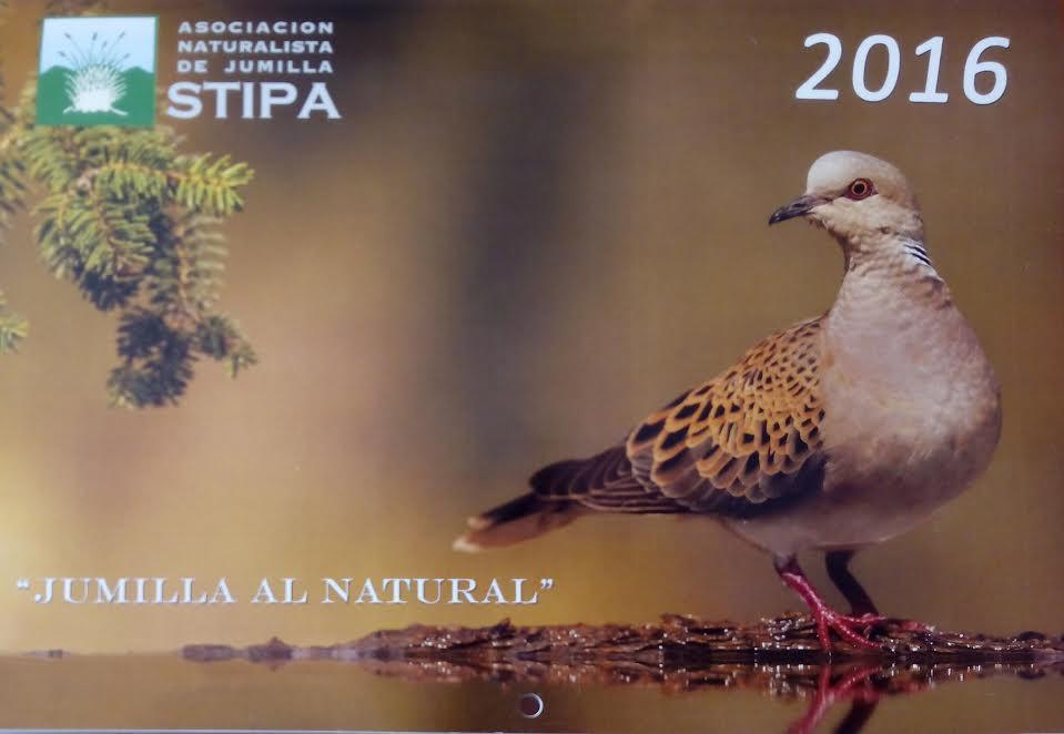 Concurso de fotografías de naturaleza de Jumilla, con Stipa