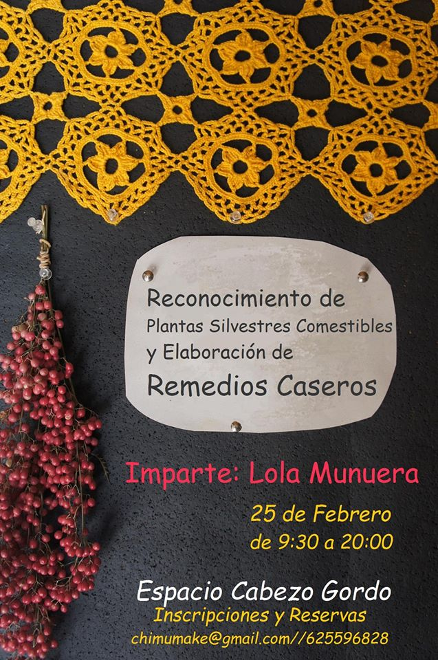 Taller de plantas para remedios caseros, con Conchi Munuera