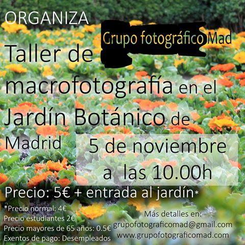 Taller de macrofotografía, con el Grupo fotográfico Mad.