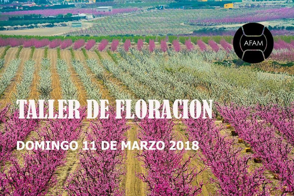 Taller fotográfico de la floración de Cieza, con AFAM