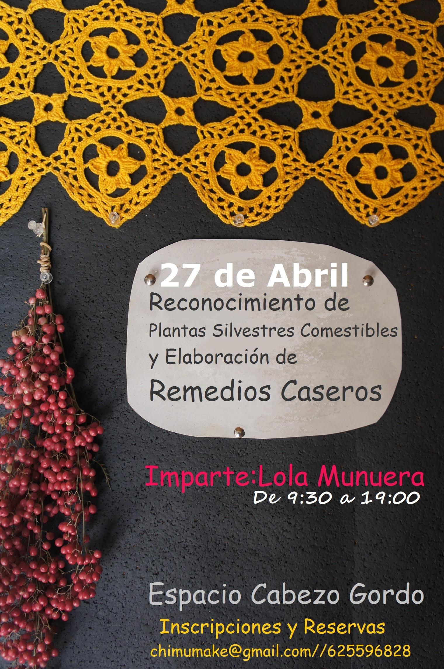 Reconocimiento de Plantas Silvestres + Remedios Caseros, con Conchi Munuera