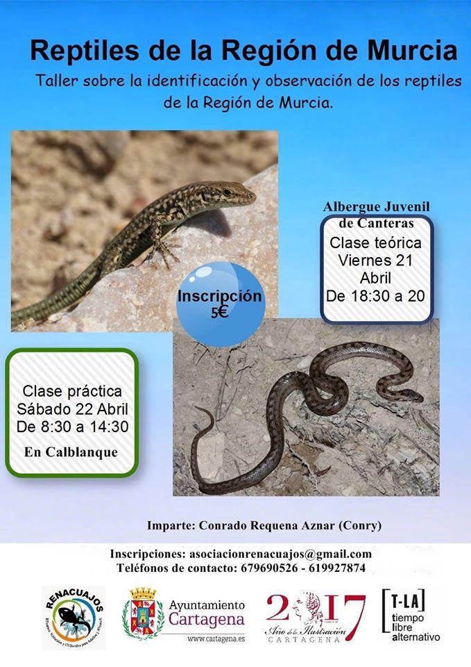 Taller de identificación de reptiles de la Región de Murcia, con la Asociación Renacuajos