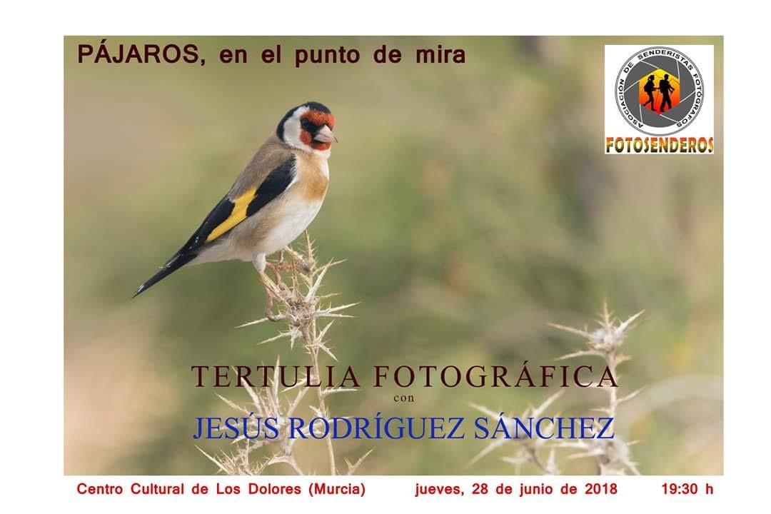 Tertulia fotográfica sobre aves, con Fotosenderos