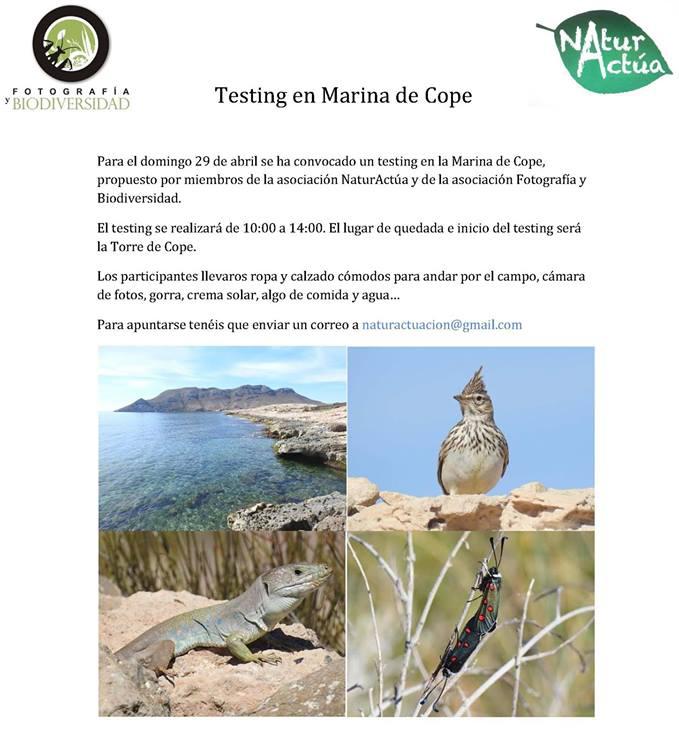 Testing de biodiversidad en Marina de Cope, con NaturActúa