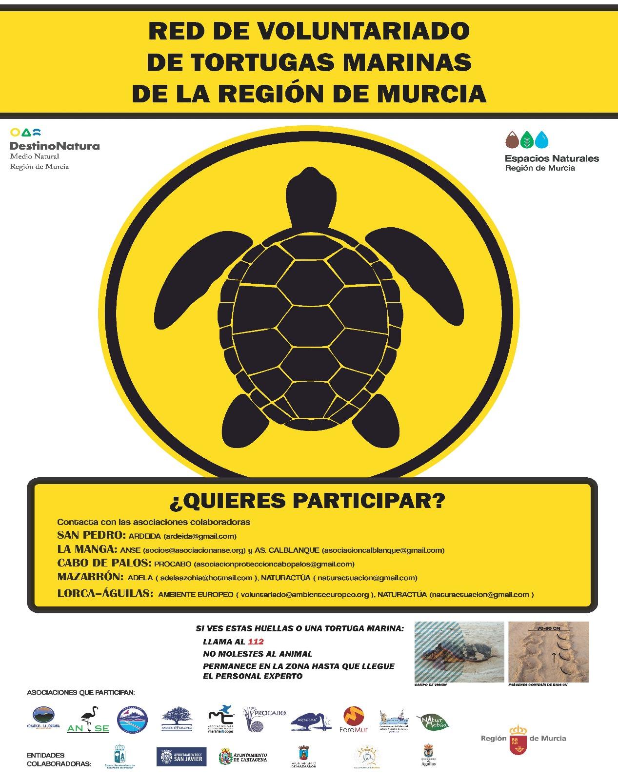 Red de Voluntariado de Tortugas Marinas de la Región Murcia, con la CARM