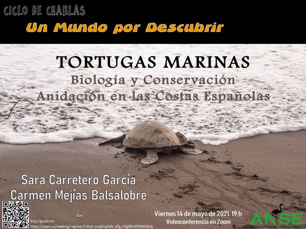 Charla sobre nuestras tortugas marinas, con ANSE