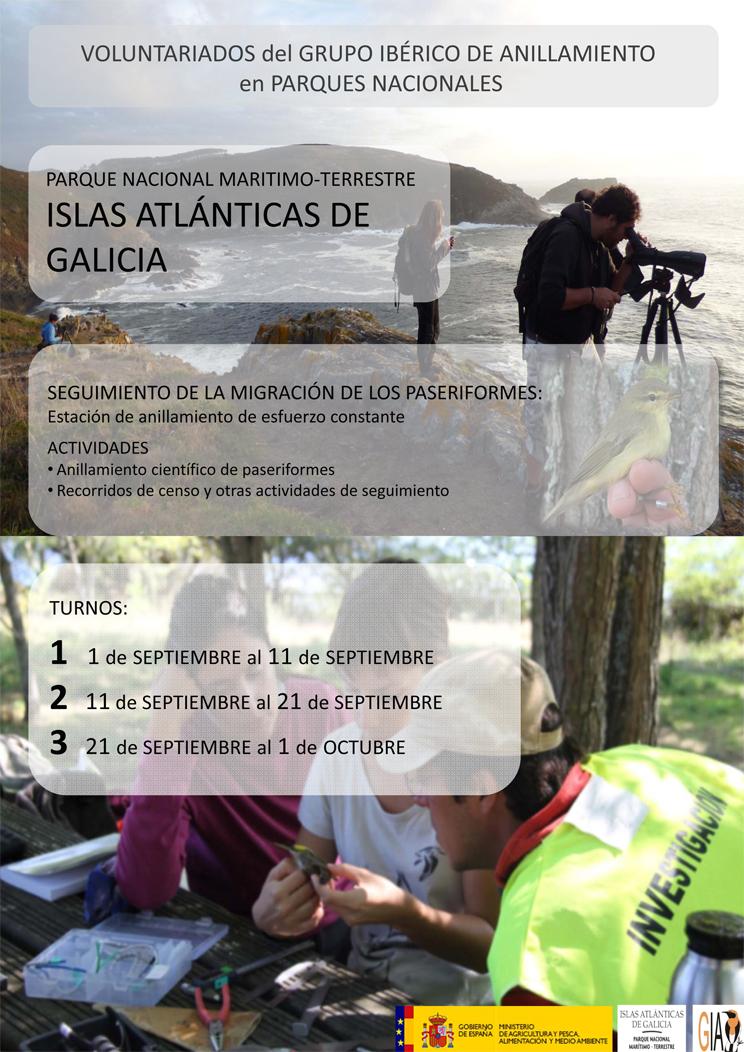 Voluntariado ambiental en las Islas Atlánticas de Galicia, con GIA