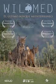 Documental 'Wilmed: El último bosque mediterráneo'.