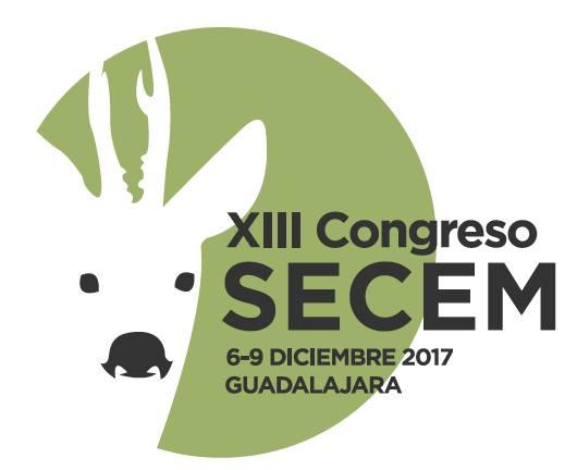 Logo del XIII Congreso de la Secem