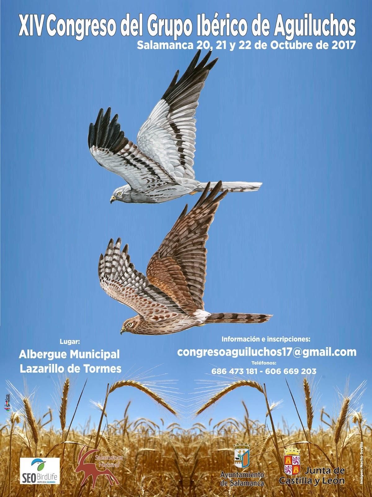 XIV Congreso del Grupo Ibérico de Aguiluchos, con SEO Salamanca