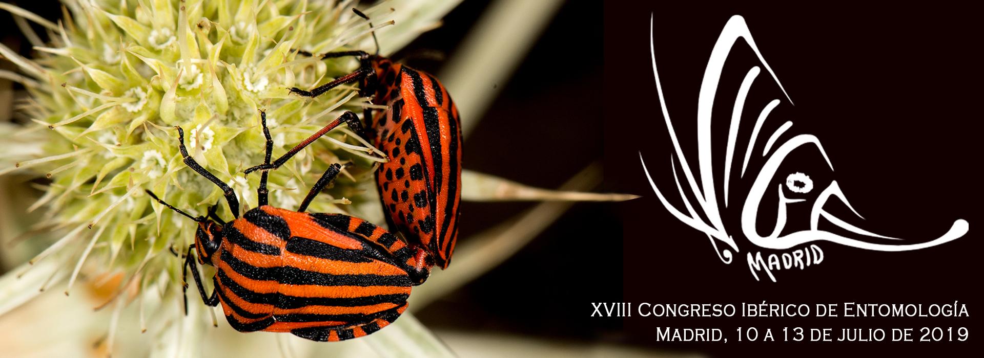 XVIII Congreso Ibérico de Entomología