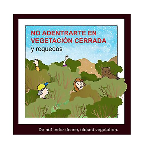 """""""No adentrarte en la vegetación cerrada"""" (Recomendación 1 de FOP)"""