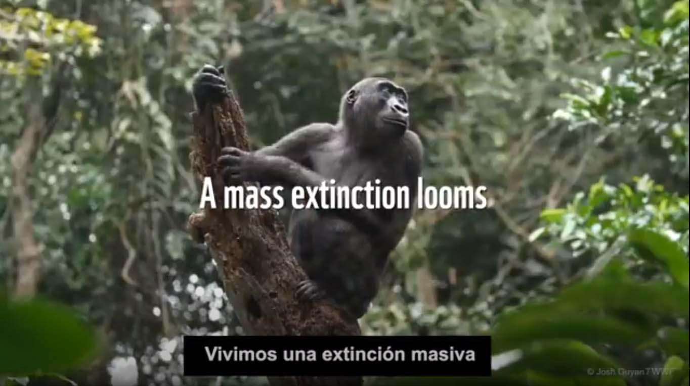 Extracto del video de WWF 'Nuevo Pacto por la Naturaleza y las Personas'
