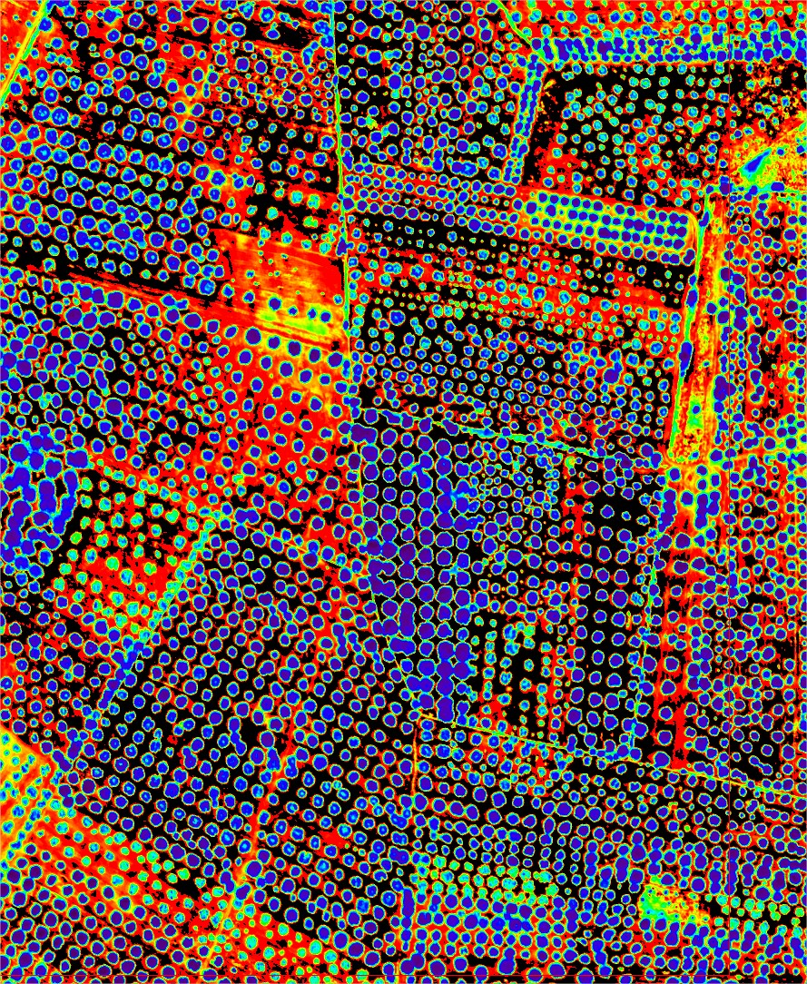 Imagen obtenida con sensores hiperespectrales en la zona afectada por Xylella fastidiosa en sur de Italia. Imagen: Pablo Zarco-Tejada / CSIC