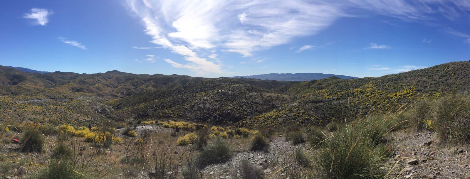 Paisaje árido de Almería. Imagen: Pedro Rey / CSIC
