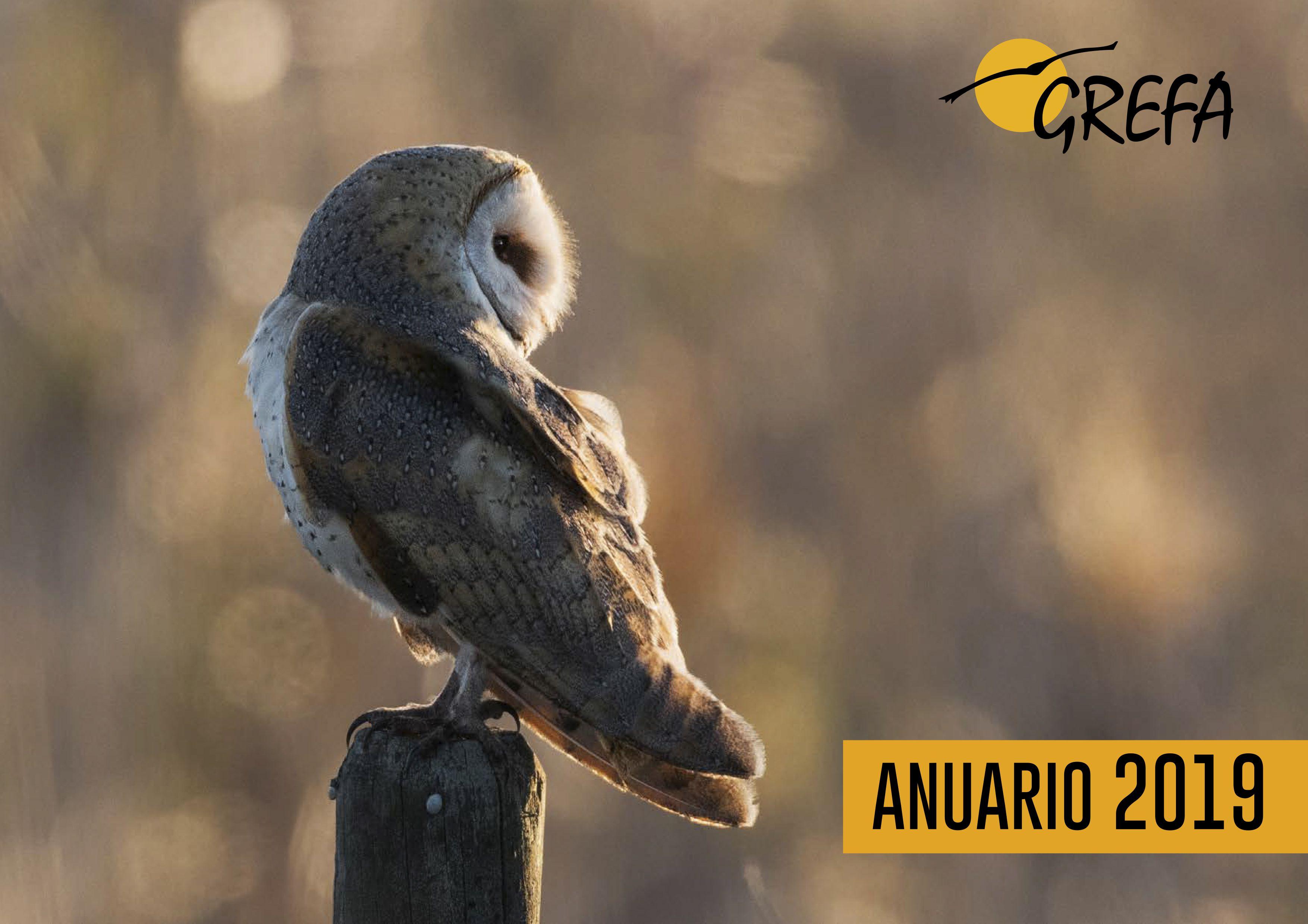 Portada del Anuario 2019 de GREFA, ilustrada con una foto de lechuza común de José Pesquero