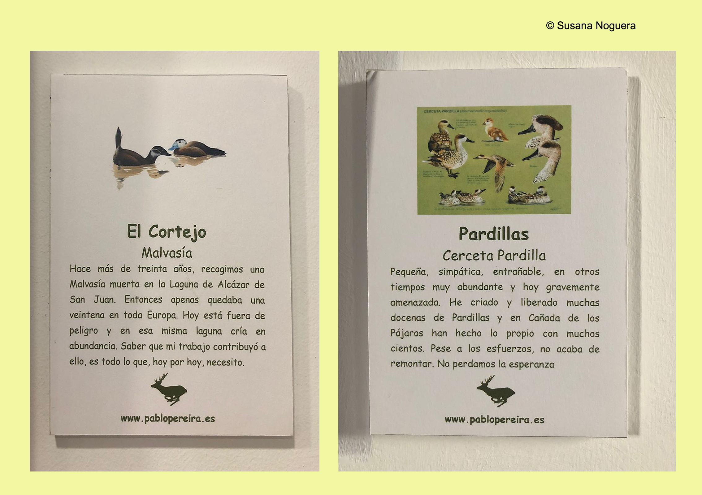 Dos carteles, con su texto explicativo, en la expo de la EOT. Imagen: Susana Noguera