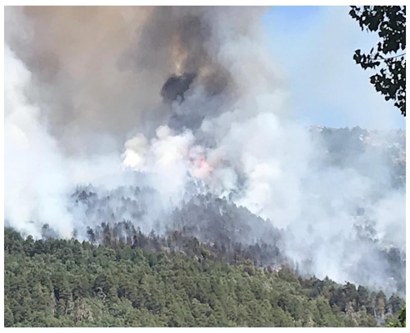 El incendio tuvo lugar el 4 de agosto del pasado verano, muy cerca de la Urbanización Caserío de Urgel. Imagen: GC