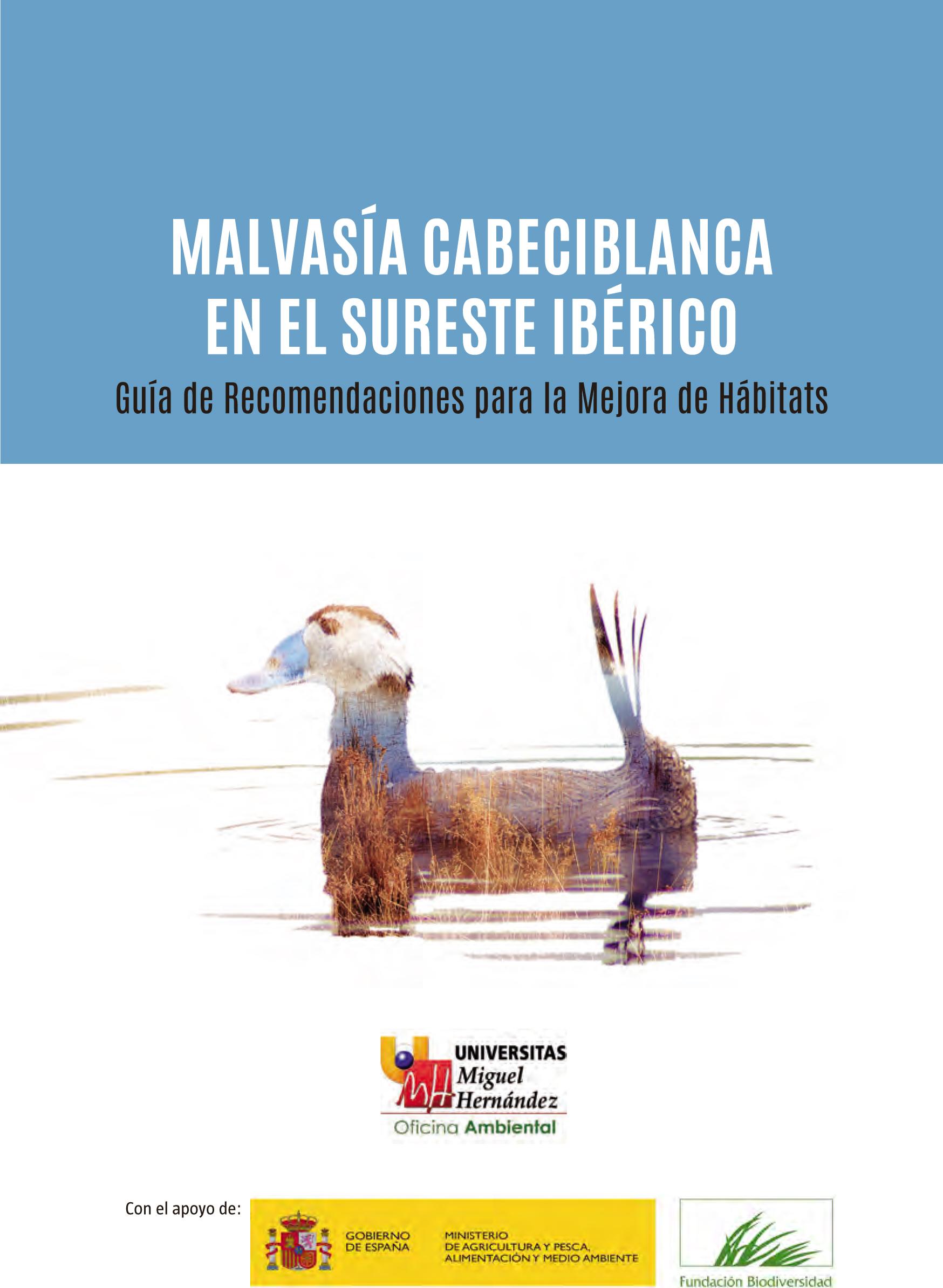 Portada de la Guía de Recomendaciones para la Mejora de Hábitats de la Malvasía Cabeciblanca en el Sureste Ibérico, de la UMH