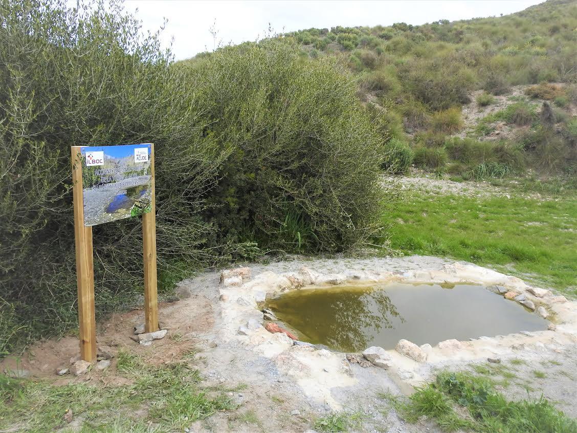 Las nuevas charcas aumentan la disponibilidad de agua y son puntos de reproducción de anfibios. Imagen: Acude