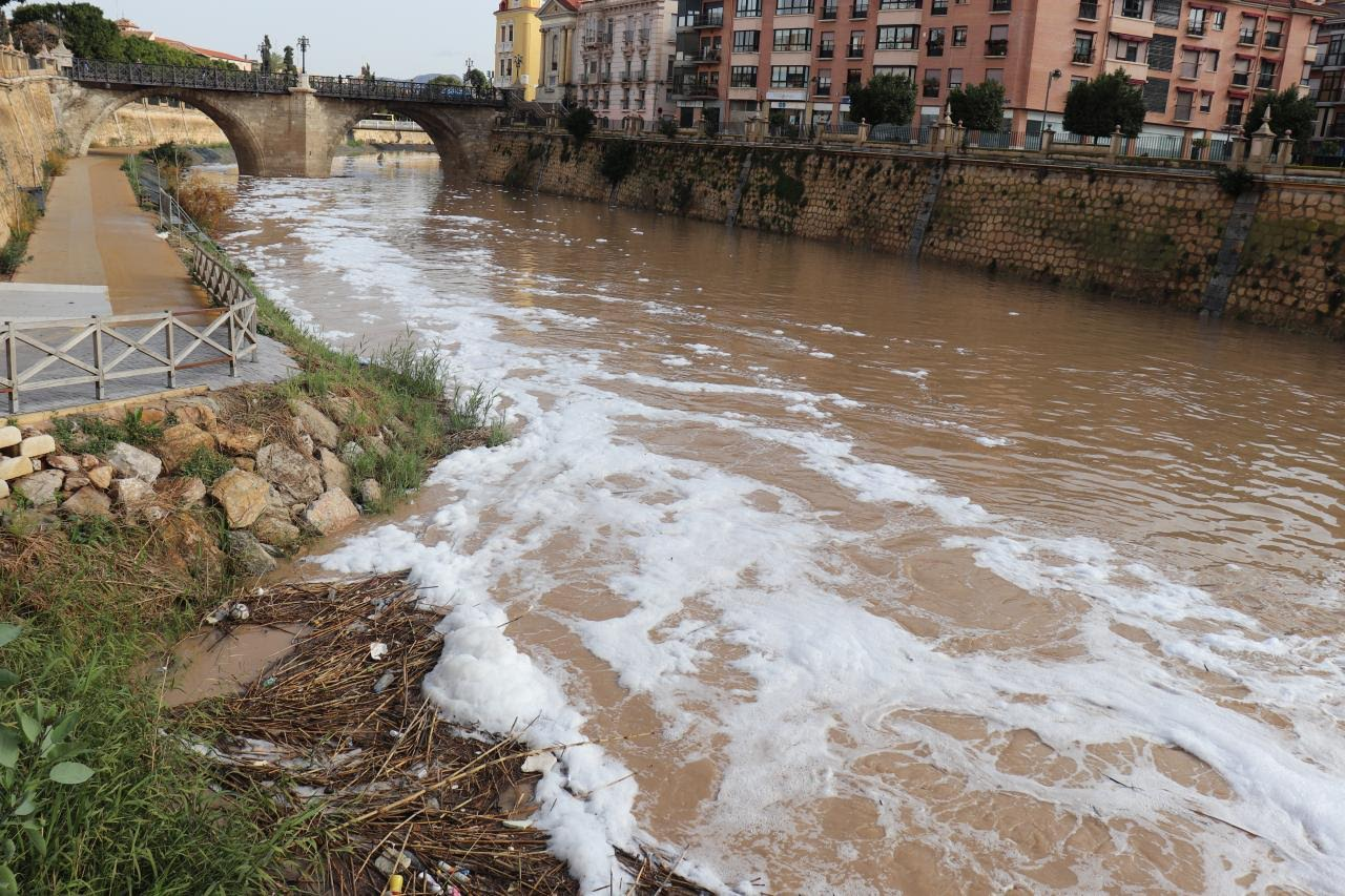 Espumas de nuevo, hoy, en el río Segura a su paso por la ciudad de Murcia. Imagen: Huermur