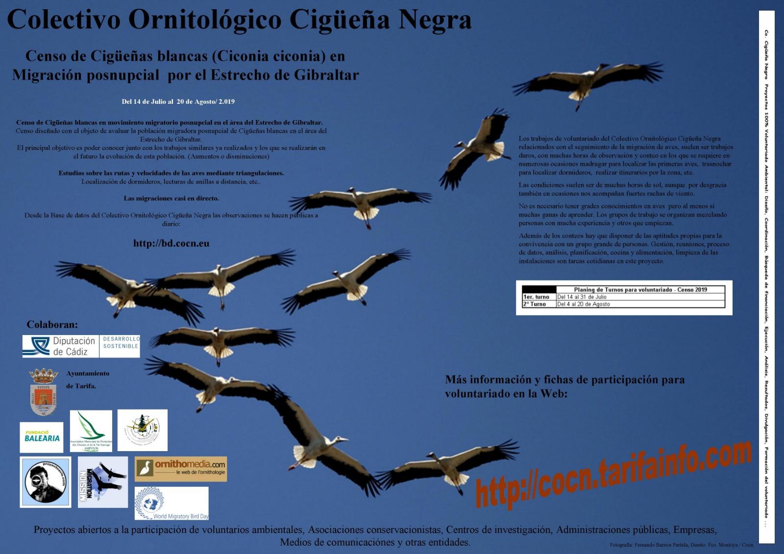 Cartel de Censo de cigüeñas blancas en migración postnupcial de COCN